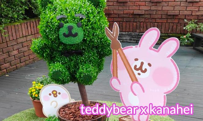 teddybear kanahei